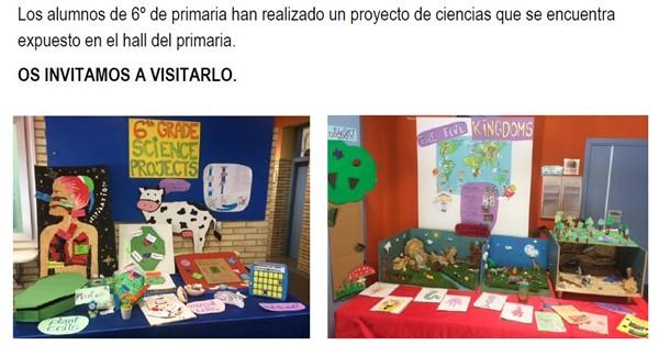 Proyecto ciencias en inglés 6º primaria